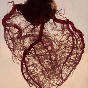 RT @SciencePorn: The blood vessels found in the human heart. http://t.co/XVh03VeVGl