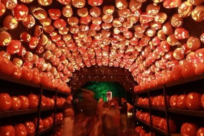 RT @NYC: The Great Jack O'Lantern Blaze 🎃through 11/15 https://t.co/JQe2VLM2G1 @HHValley...