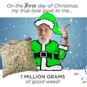 RT @tommychong: On the first day of Christmas, my true love gave to me, one million grams of good we...
