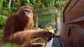 RT KawaiPianos @KawaiPianos: Happy #ChineseNewYear - the Year of the Monkey! #KAWAI #piano https://t...