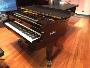 Reloaded twaddle – RT @luisalfonsobes: @Fazioli_Pianos for the @SydneyPianoComp starting today! On-...