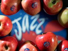 Reloaded twaddle – RT @US_Apples: The crunch of a sweet juicy @JazzApple is music to our ears. http...